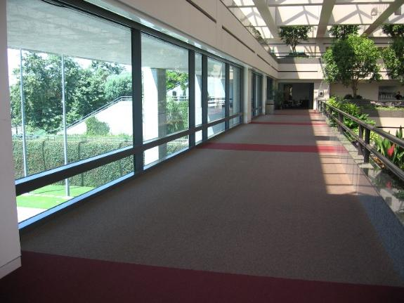 University Hall Skyway