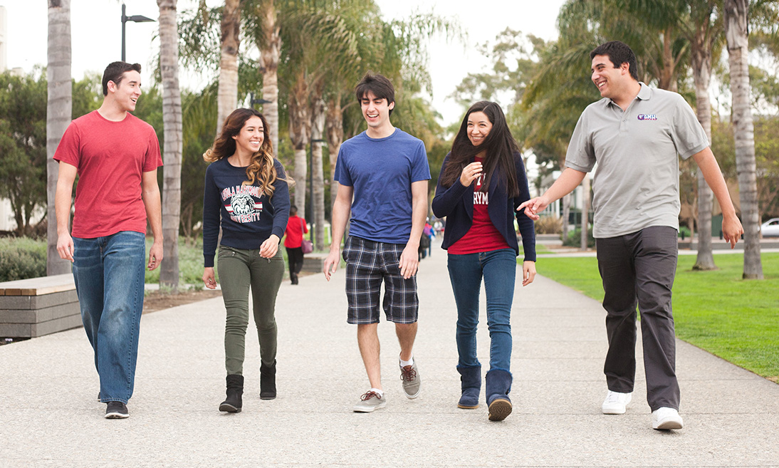 Several students walking together down Palm Walk